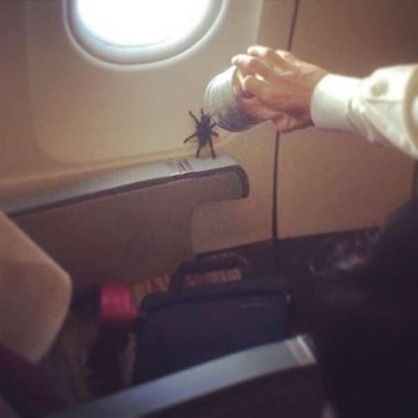 annoying passenger shaming flight travel airlines 69 605